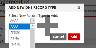 24 DNS Record Types Supported